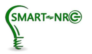 Smart NRG logo